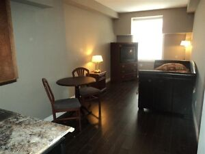 1 Month Free! Brand New Downtown Bachelor Apartments