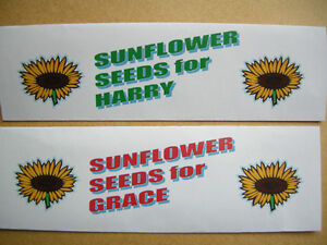 FUN-NOVELTY-BIRTHDAY-PRESENT-ALL-AGES-PERSONALISED-PACK-of-20-SUNFLOWER-SEEDS