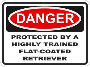 1x-DANGER-PROTECTED-BY-FLAT-COATED-RETRIEVER-WARNING-FUNNY-STICKER-DOG-PET-DECAL