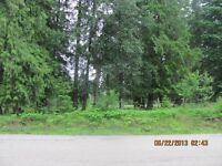 Lot 2 Scotch Creek Wharf Road, Shuswap Lake