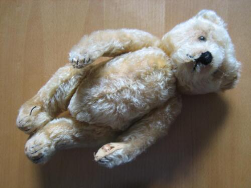 alter steiff b r teddyb r ca 36cm teddy in baden. Black Bedroom Furniture Sets. Home Design Ideas