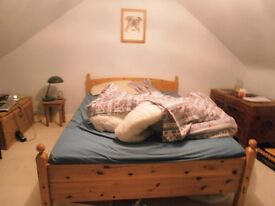Modern Loft Space - double bedroom with second spacious room and private washroom (toilet and sink)