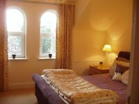 Fab King Size room with en suite in modern town house Withington - for one proessional -10th Dec