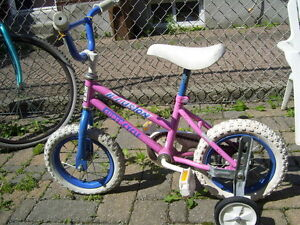 bike with training wheels