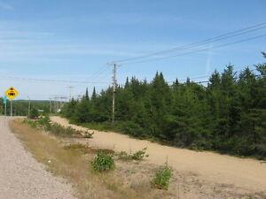 Terrains à vendre- Forestville