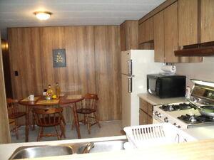 64 ft. x 14ft Bendix mobile home for sale $ 14500.00 Kitchener / Waterloo Kitchener Area image 8