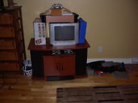 Multi-media TV stand