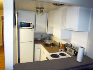 Dorval Monthly Apts,$975/monthly, furnished, no lease wifi incl West Island Greater Montréal image 3