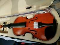 Beautiful Acoustic Violin