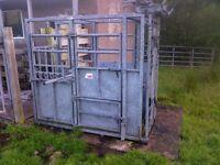 Cattle crush gate farm equipment