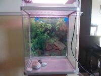 418 Aquarium Fish Tank in very nice condition with a light