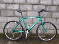 green mens bike 26'' max raleigh