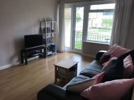 Room to rent in flat share £275pcm