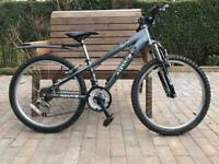 Raleigh junior mountain bike