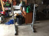 Adjustable Squat/Weight stand