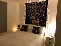 Double bedroom available in spacious, modern 2 bed flat.