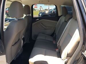 2013 Ford Escape SE - NAV, HEATED SEATS Kingston Kingston Area image 13