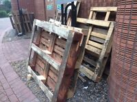 Free Wooden Pallets x 10