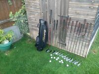 14 Gold Clubs and 1 Golf Bag