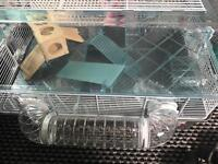 Large hamster cage and goodies!!!