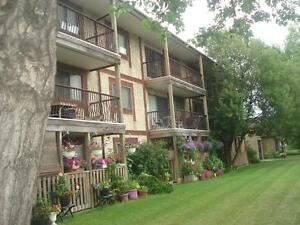 Bachelor Apt. available  - Close to Yellowhead Trail!