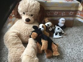 Soft cuddly toys