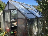 Cheap Green House, needs to be dismantled, ideal for winter protection. Can help