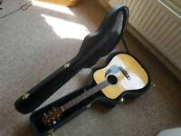 Fender Acoustic Guitar (with hard case)