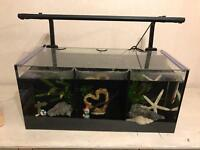 Aqua one trio fish tank