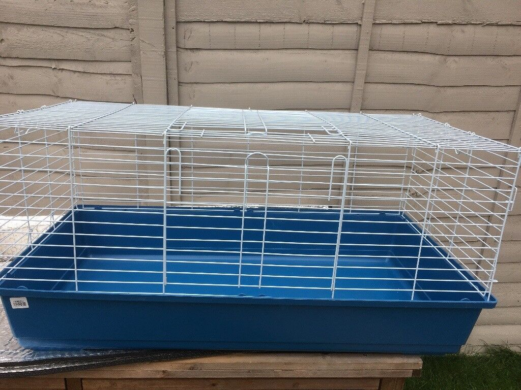 Indoor guinea pig cages.