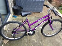 Apollo Tesqua Ladies Bike