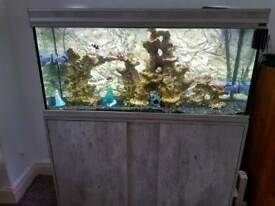 Marine complete fish set up