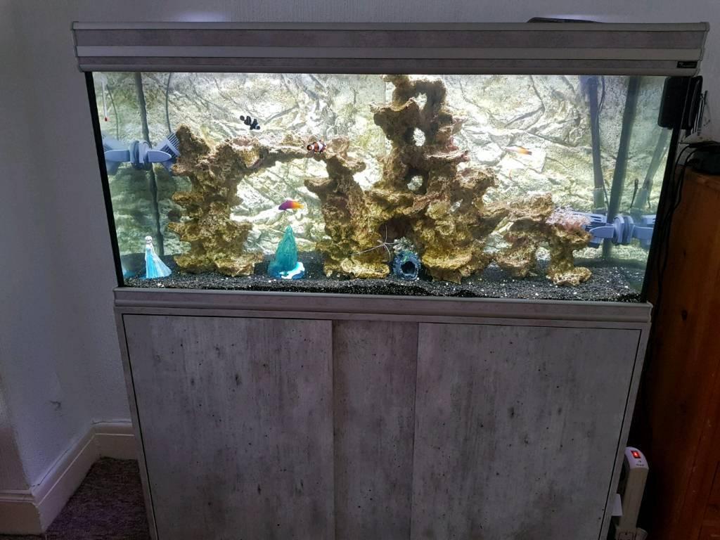 Marine complete fish set up