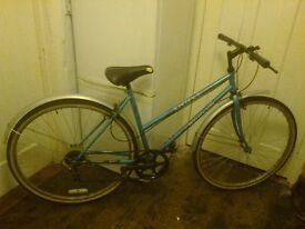 Apollo Riviera ladies' bike