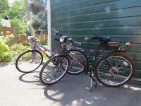 Ladies and Gents Bicycles for sale