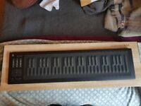 Mint condition Roli Rise 49 - 2 months old / boxed