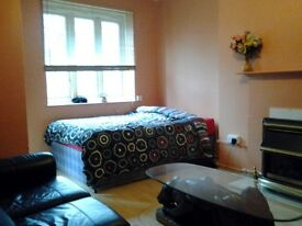 Beautiful room near Vauxhall!