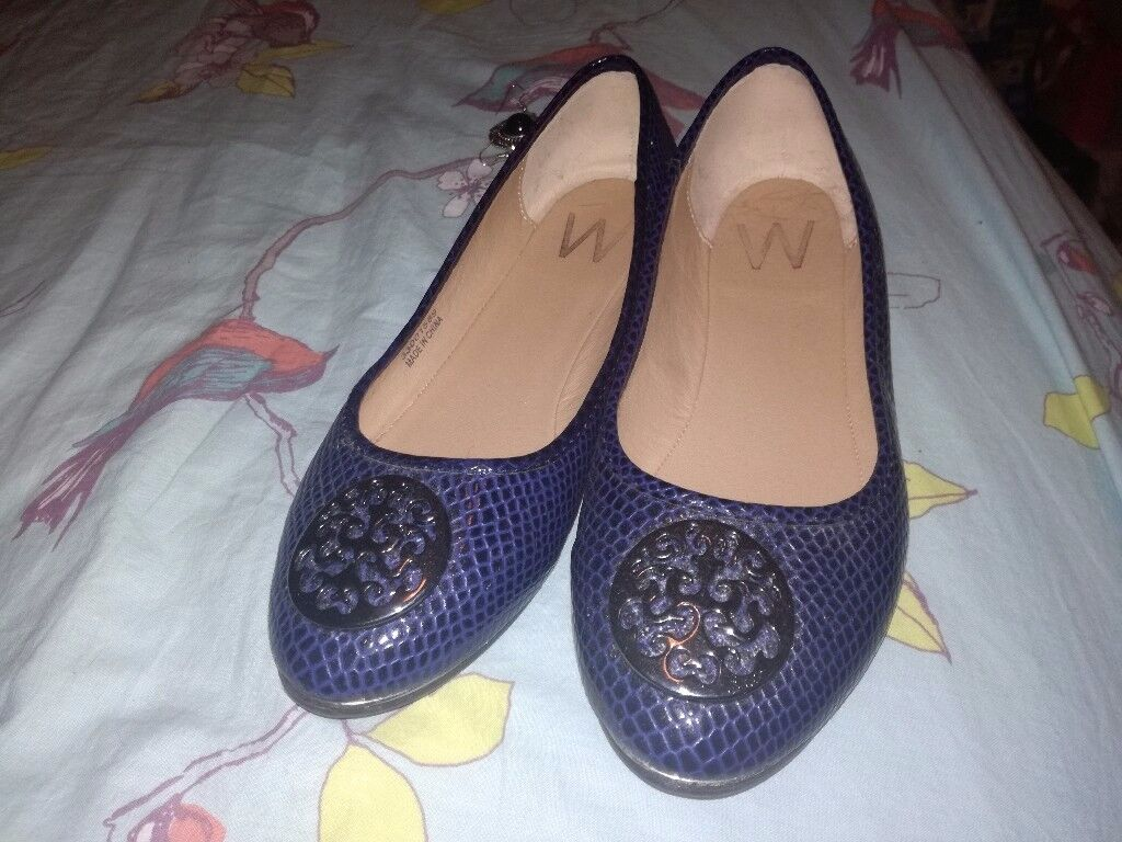 Brand New Navy Shoes