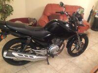 Yamaha YBR 125 2011 MOT V5 Available