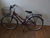 Adult dawes mountain bike with rack and basket