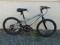 Boys Apollo Spector bike