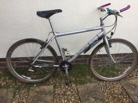 Gents Ridgeback Mountain Bike