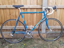 Peugeot Professional 550 Road Bike Large 60cm Reynolds 531 Liteweight Steel 16speed Campagnolo Gears
