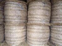 70 bales of 4x4 coarse hay