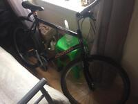 Apollo Tremor Adult Bike