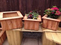 3 x solid planters , all treated , free delivery