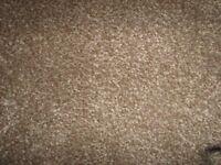 New carpet remnent