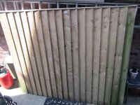 6x5 foot fence panel