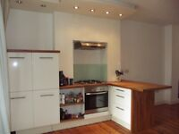 SUPERB SPACIOUS ONE BED FLAT - PRIVATE GARDEN- NO AGENCY FEES