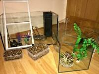 3xFish Tanks And Accessories